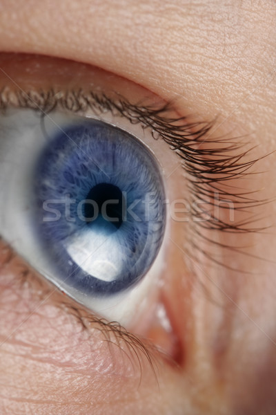Olho abstrato fundo preto pele Foto stock © SSilver