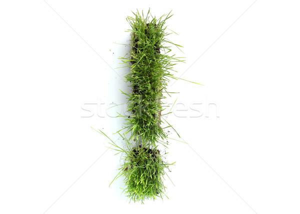 трава восклицательный знак весны дизайна цвета Сток-фото © SSilver
