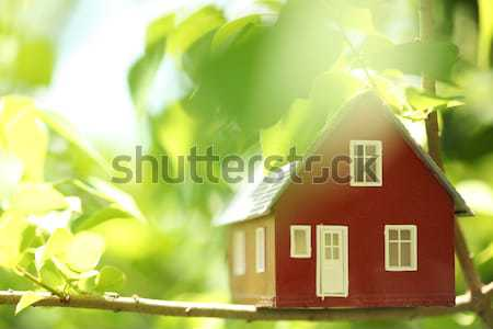 House in the trees Stock photo © SSilver