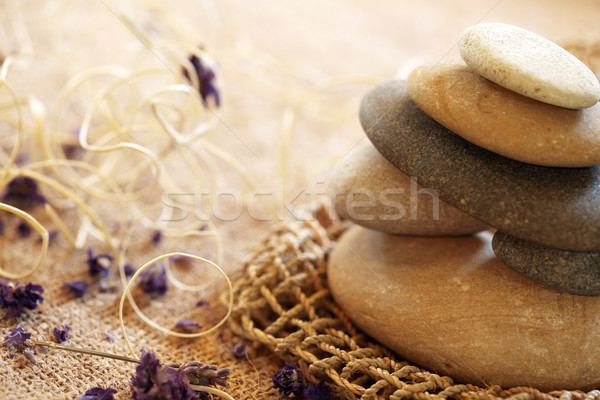 Pedras flor saúde rocha vida Foto stock © SSilver