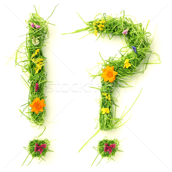 Question mark & exclamation mark made of flowers and grass Stock photo © SSilver