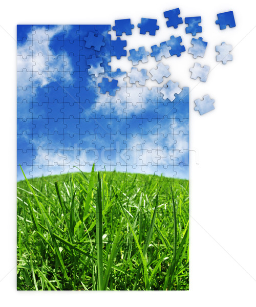 Blue & green grass puzzle Stock photo © SSilver