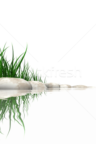 Stones & grass at waters edge Stock photo © SSilver
