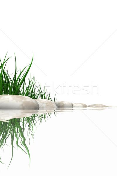 石 草 エッジ 孤立した 白 海 ストックフォト © SSilver