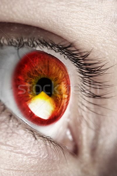 Bright red eye Stock photo © SSilver