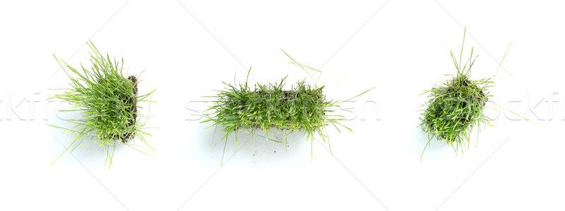 Symbols made of grass - period, comma, dash Stock photo © SSilver