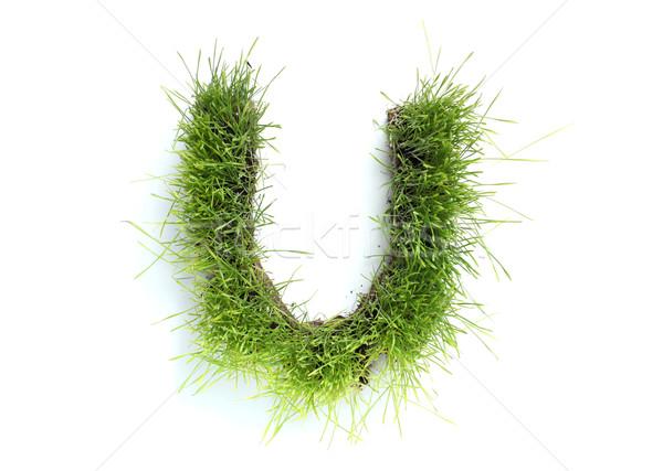 письма трава весны дизайна завода газона Сток-фото © SSilver
