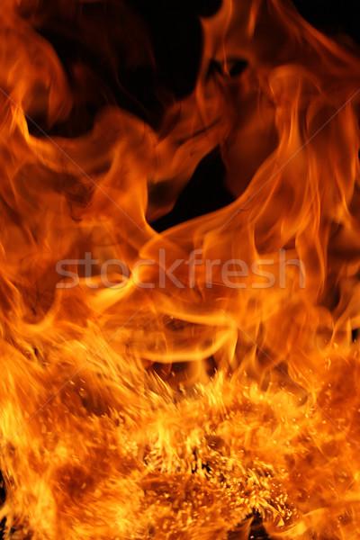 Fire Stock photo © SSilver