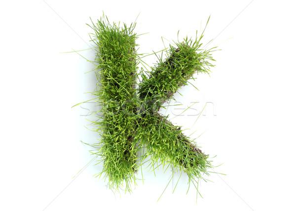 Cartas grama primavera projeto planta gramado Foto stock © SSilver