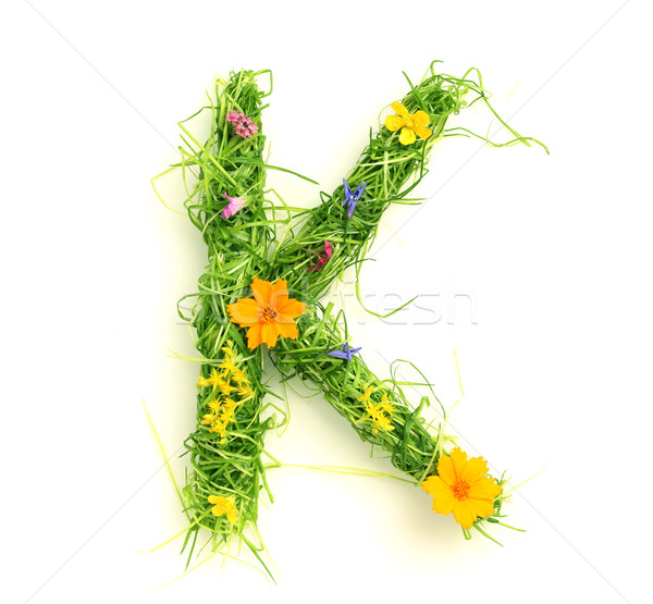Letters made of flowers and grass Stock photo © SSilver