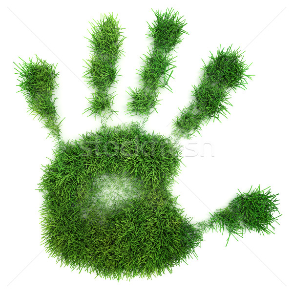 Hand print of grass Stock photo © SSilver