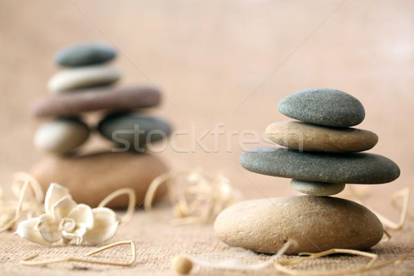 Stenen bloemen gezondheid rock leven Stockfoto © SSilver