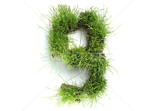 Sayılar çim bahar dizayn renk bitki Stok fotoğraf © SSilver