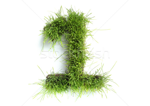 Nummers gras voorjaar ontwerp kleur plant Stockfoto © SSilver