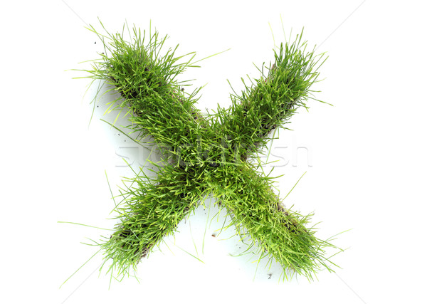 Stock photo: Letters made of grass - X