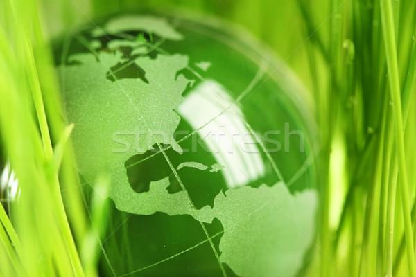 Vidro globo grama verde negócio luz projeto Foto stock © SSilver