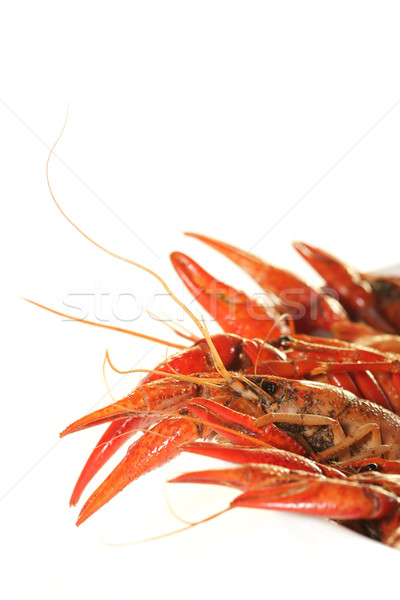 Boiled crawfish Stock photo © SSilver