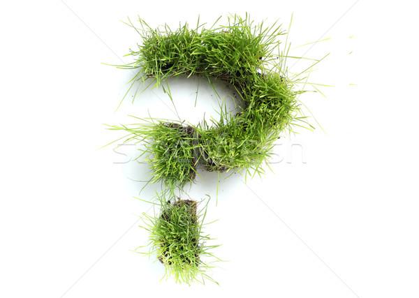 Simboli erba punto di domanda primavera design colore Foto d'archivio © SSilver