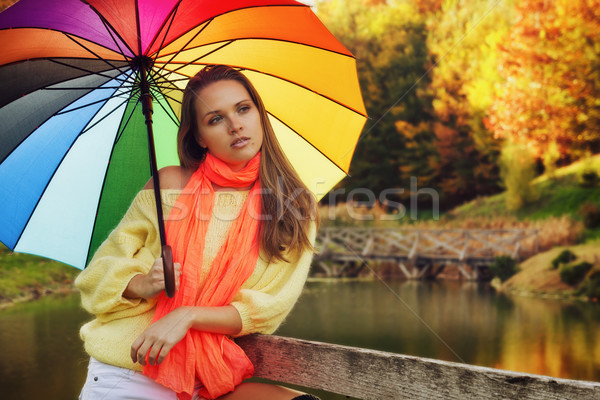 Colors of autumn Stock photo © Steevy84