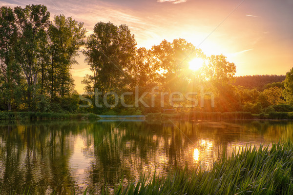 Fishing lake in the sunset Stock photo © Steevy84