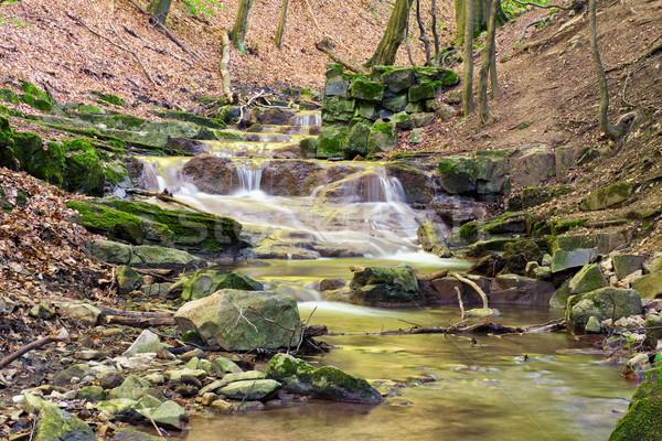 Yaz mini çağlayan yer doğa rezerv Stok fotoğraf © Steevy84