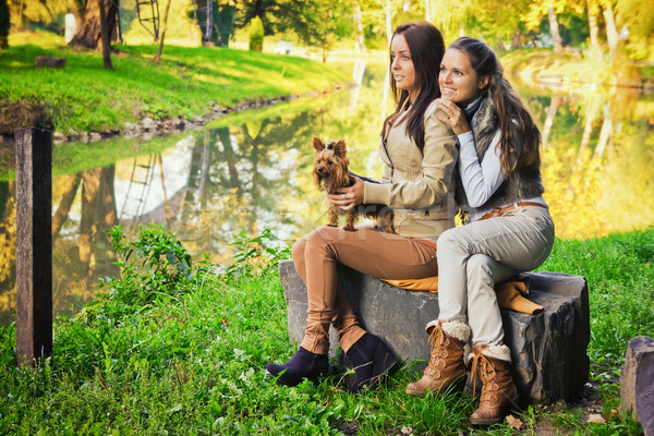 Arkadaşlar park güzel köpek sonbahar Stok fotoğraf © Steevy84