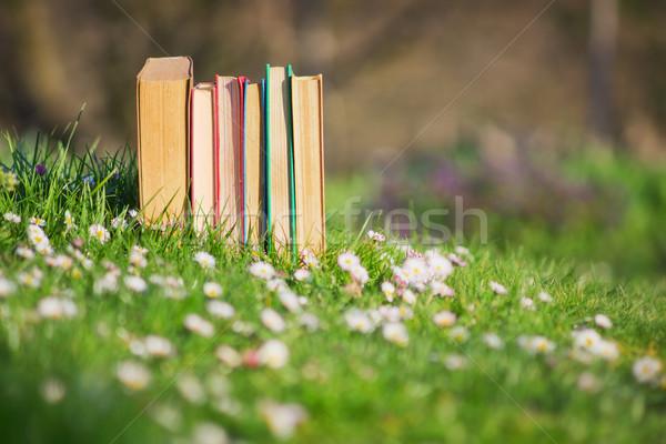 Kitaplar eski çim kâğıt bahar orman Stok fotoğraf © Steevy84