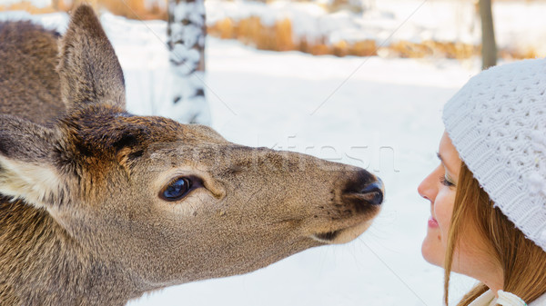 Friendship with a deer Stock photo © Steevy84