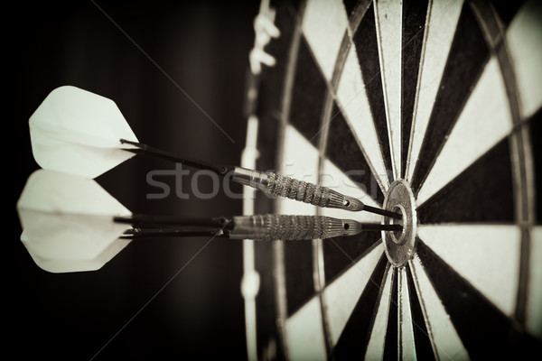 Bull's Eye! Stock photo © Steevy84