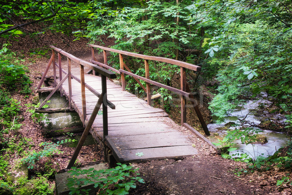 Köprü derin orman küçük yer doğa Stok fotoğraf © Steevy84