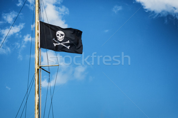 Pirate flag Stock photo © Steevy84