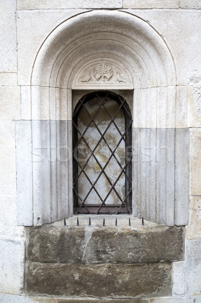 Detail of closed window of the Cathedral of Modena, Italy Stock photo © stefanoventuri