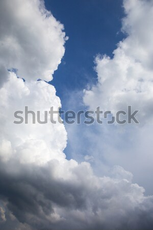 blue sky background with tiny clouds Stock photo © stefanoventuri