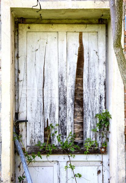 Velho porta abandonado madeira parede casa Foto stock © stefanoventuri