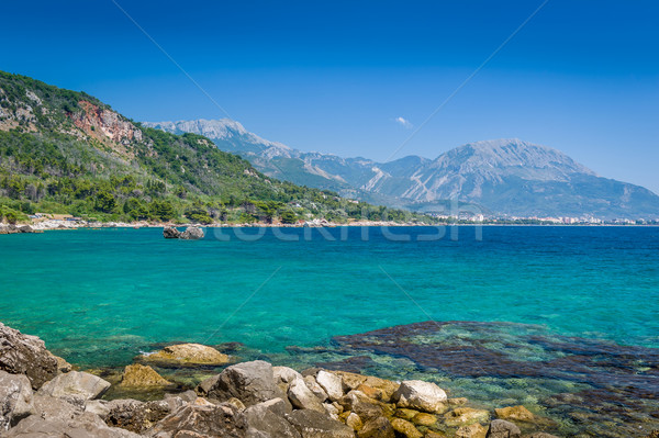 Черногория побережье морской пейзаж Бар Солнечный Сток-фото © Steffus