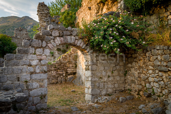 Ancient fortress arch way and ruined walls Stock photo © Steffus