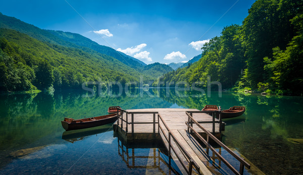 Biogradsko lake landscape, Montenegro Stock photo © Steffus