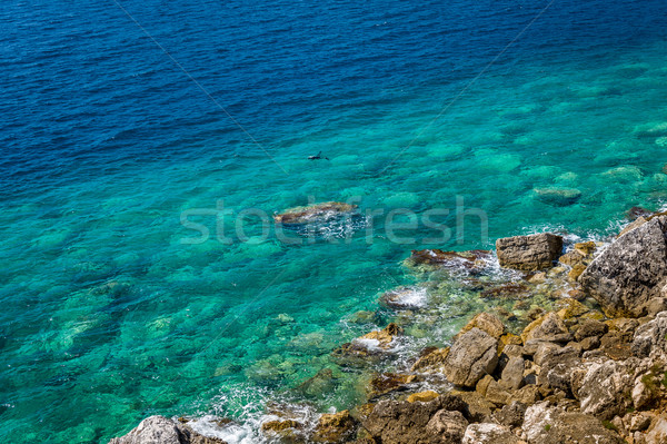Diving in Adriatic sea perfect turquoise water Stock photo © Steffus