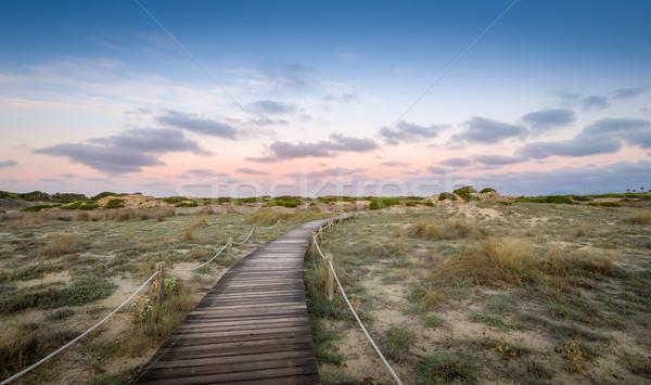 Manera paraíso camino mar playa Foto stock © Steffus