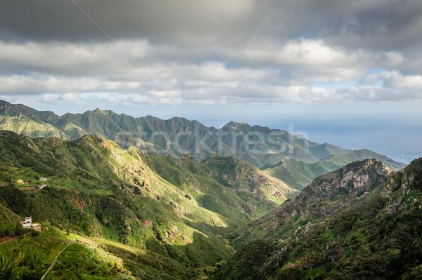 Tenerife ada kayalar dağlar manzara kanarya Stok fotoğraf © Steffus