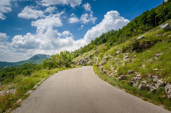 Mountain road adventure Stock photo © Steffus