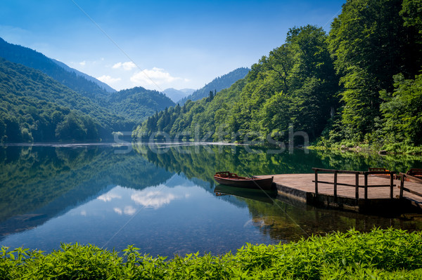 парка пейзаж красивой озеро холмы гор Сток-фото © Steffus