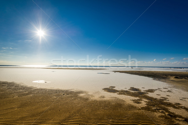 Frozen beach Stock photo © Steffus