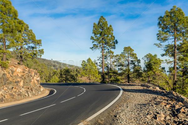 Mountain roads at Tenerife, Spain Stock photo © Steffus