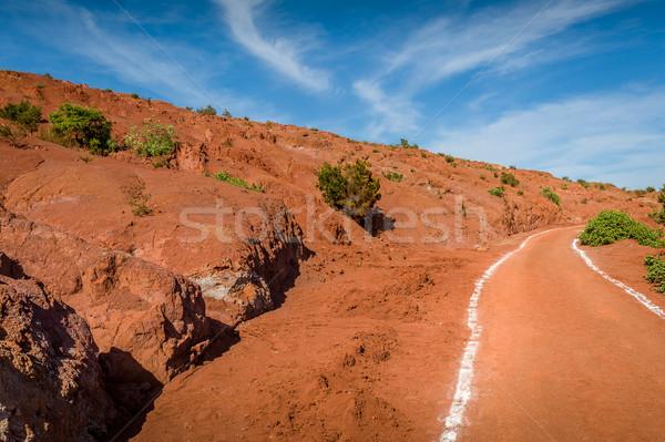 Red vulcanic fields. La Gomera island. Stock photo © Steffus
