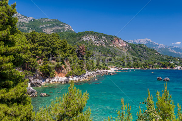 Adriatic summer day sea landscape Stock photo © Steffus