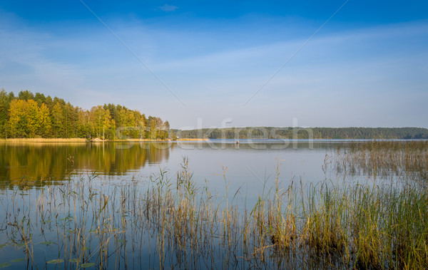 Lake landscape Stock photo © Steffus