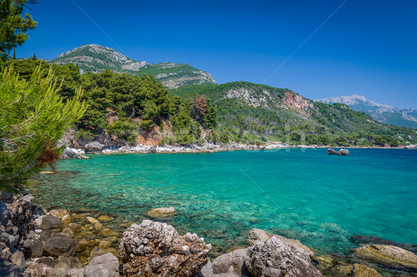 Mar costa vista montana costa paisaje Foto stock © Steffus