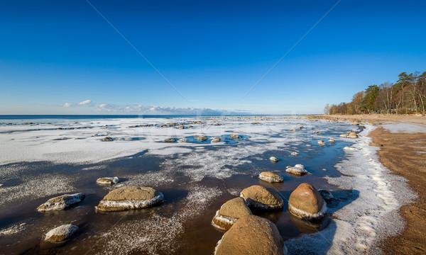 Frío otono playa primero hielo Foto stock © Steffus