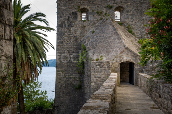 Forte Mare ancient fortress secretive entrance Stock photo © Steffus